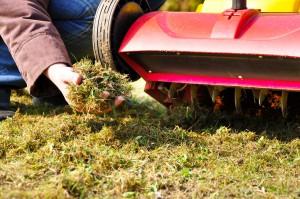 Moos im Rasen - Rasen vertikutieren